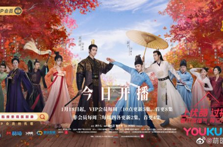 Sinopsis dan Review Drama China Dr. Cutie (2020)