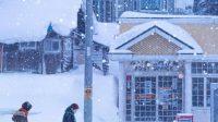 Sinopsis dan Review Film Korea Moonlit Winter (2019)