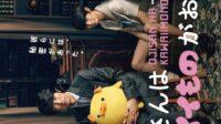 Middle Aged Man Loves Cute Things : Sinopsis dan Review Drama Jepang